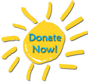 Sun Donate Now Button